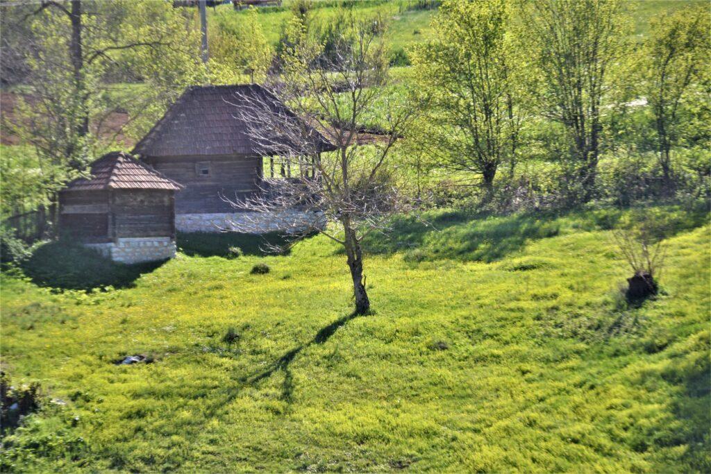 Zlatibor - gde jesti